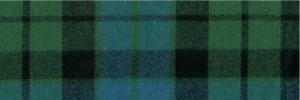 Ancient MacKay Tartan (in Scotland it's pronounced 'McEye')